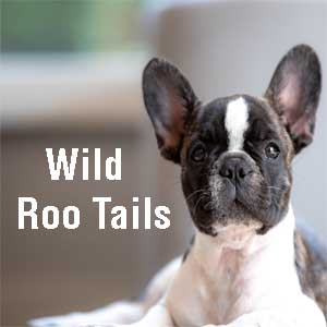 wild roo tails